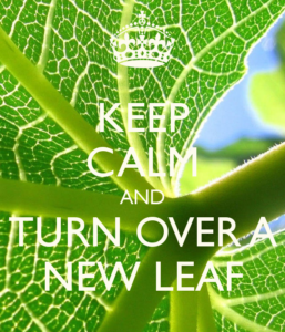 keep calm and turn over a new leaf image